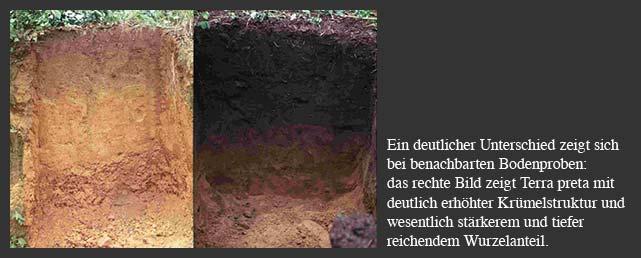 Boden im Original und mit Kohle